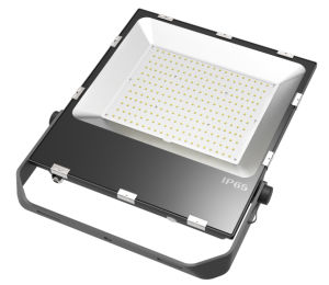 LED Flood Light with Fluorocarbon Treatment and 304 Braket pictures & photos