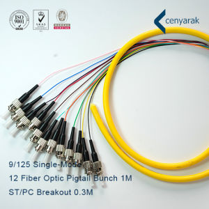 High Quality Sm ST/PC 12 Fiber Optic Pigtail pictures & photos