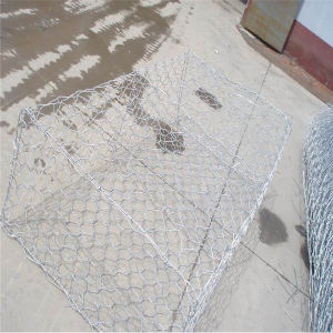 China Anping Hexagonal Wire Mesh for Gabion Box pictures & photos