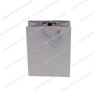 Paper Bag, Gift Bag, Promotional Bag, Recordable Gift Bag pictures & photos