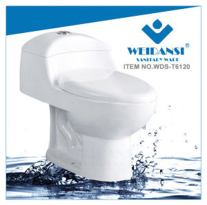 Weidansi Ceramic Siphonic S-Trap One Piece Toilet (WDS-T6120)