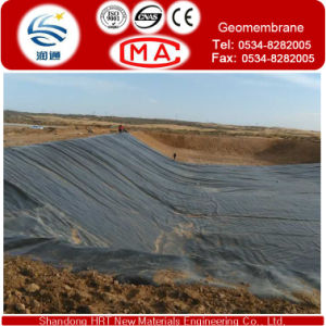 Double Column Point HDPE Geomembrane Used for Mine