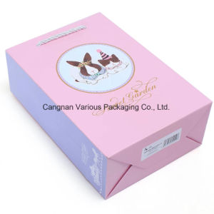 Promotion Gift Paper Bag for Garments, cosmetic Packaging Bag pictures & photos