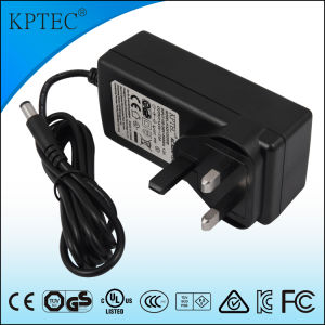 42W AC/DC Switching Power Supply with Ce Certificate