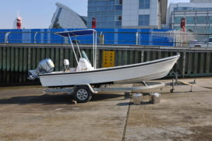 Fishingboat Sw19 Fishingboat Panga Boat (SW19) pictures & photos