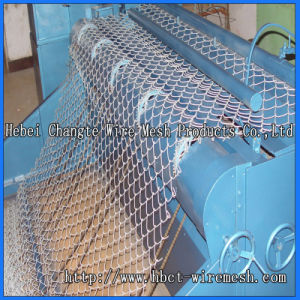 PVC and Galvanized Main Chain Link Fence pictures & photos