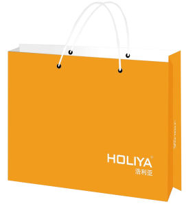 High Quality Yellow Colour Fashion Paper Bag (YY--B0326) pictures & photos