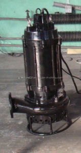 Stainless Steel Multistage Submersible Sewage Pump (SPS6-50-1.8) pictures & photos