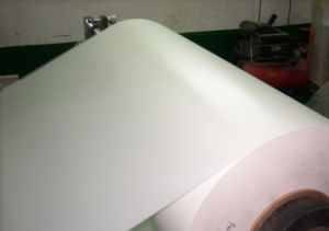 White Opaque Pet Film, Milky White Pet Film