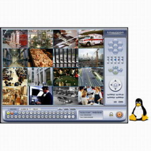 China Linux DVR Software for Hikvision Cards (H 264) - China