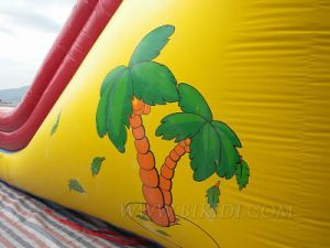 Inflatable Slides, Simpsons Theme Slide Bouncer (B4066) pictures & photos