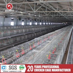 Hot and Cold Galvanized Chicken Cage pictures & photos