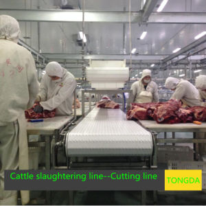 Abattoir Equipment Made in China pictures & photos