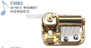 Deluxe 30-Note Musical Movement (Y30B3) C pictures & photos