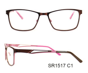 Double Color Creative Metal Optical Frames Eyewear for Sale pictures & photos