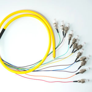 High Quality Sm FC/PC 12f Fiber Optic Pigtail pictures & photos
