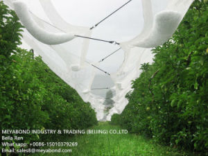 Vineyard Anti Hail Nets For Fruit Protection