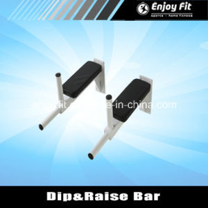 Hot Sale DIP Bar Knee Raise Bar- Wall Mounted