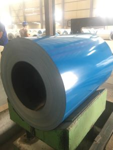 Sea Blue Pre-Painted Steel Coils Factory in China