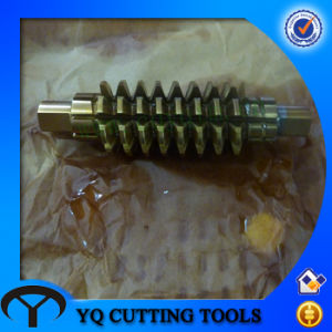 HSS Worm Hobbing Cutter with Shank pictures & photos