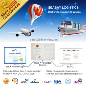 Professional Sea Shipping Agent in Shanghai to Canada pictures & photos
