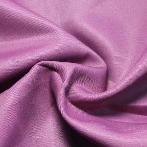 300t Twill 100% Polyester Pongee Fabric Sltn9188 pictures & photos