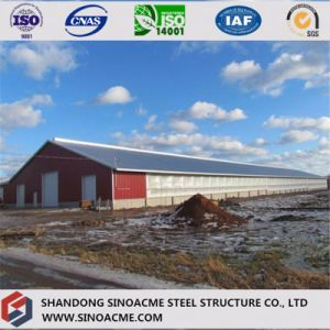 Sinoacme Prefabricated Light Steel Structure Cow Shed pictures & photos