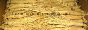 High Quality Low Pesticide White Ginseng Root & Red Ginseng Root pictures & photos