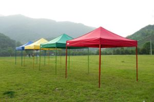 3*3m 3*4.5m Folding Tent with Poly UV-Protection 2016 pictures & photos