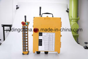 Long Distance Induatrial Wireless Radio Remote Control for Crane F21-20d pictures & photos