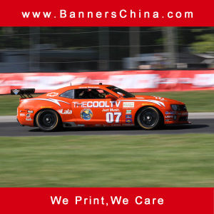 Die Cut Vinyl Car Body Decal pictures & photos