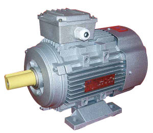 Ie2 Ms Alu Housing Three-Phase Induction Motor (MS-802-4) pictures & photos