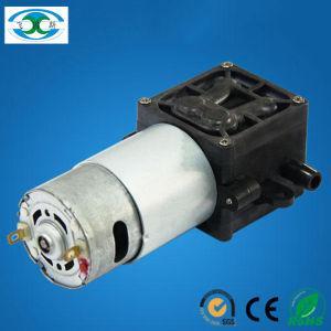 2L/M Electric Brush DC Motor Diaphragm Mini Water Sprayer Pump
