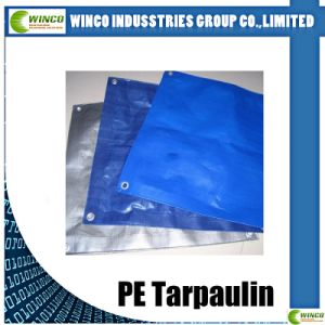Tarpaulin Canvas Tarpaulin for Truck/Boat Covering pictures & photos