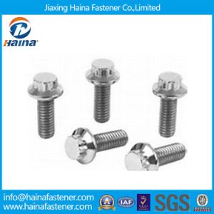 Stainless Steel 18-8 12 Point Flange Bolts pictures & photos
