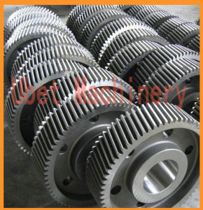 Precision Straight Teethed Spur Gear with Different Teeth pictures & photos
