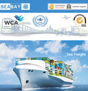 Sea Freight Forwarders to Singapore in China - China