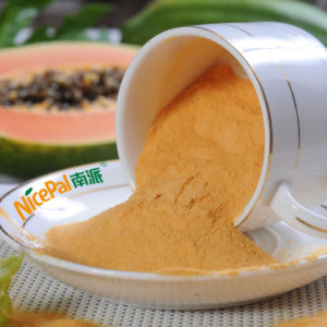 Factory Supply Free Sample 100% Natural Papaya Vegetable Powder for Healthcare Product pictures & photos