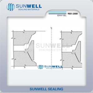 Ax Ring Gasket Sunwell 870 pictures & photos