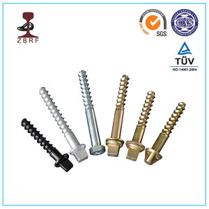 Ss Screw Spike for Tie Plate pictures & photos