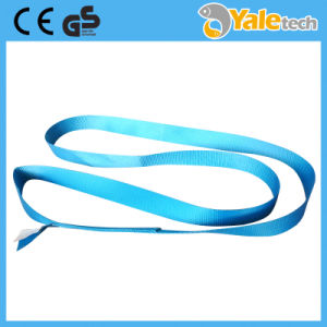 En1492-1 Ce and GS Certified Single-Ply Endless Polyester Lifting Belt pictures & photos
