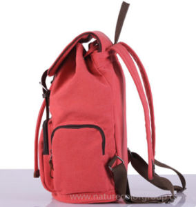 Fashion Canvas Sport School Backpack pictures & photos