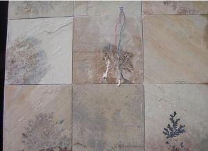 Fossil Mint Beige Sandstone Tiles India