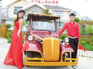 8 Seaters Electric Vintage Wedding Car Battery 48V