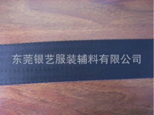 High Strength Flame Retardant Nylon Webbing pictures & photos