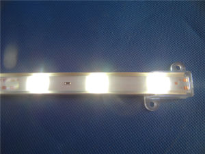 Felxble 5054 of Waterproof LED Strip with Rubber Tube pictures & photos