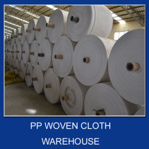 Tronsparent PP Woven Fabric pictures & photos