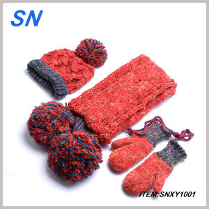2013 Acrylic Knitted Stock Promotion Hat Gloves Scarf (SNXY1001) pictures & photos