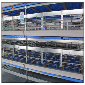 Poultry Farming Equipment H Type Broiler Battery Chicken Cage for Sale pictures & photos