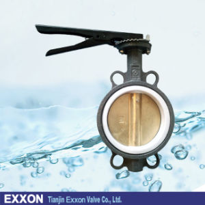 Cast Iron Wafer Type Bronze Disc Butterfly Valve